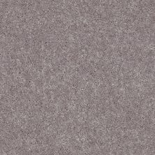 Shaw Floors Value Collections All Star Weekend II 12′ Net River Slate 00720_E0814