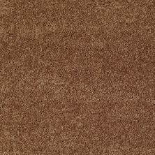 Shaw Floors Value Collections All Star Weekend II 12′ Net Desert Sunrise 00721_E0814