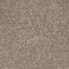 Shaw Floors Value Collections All Star Weekend II 15′ Net River Slate 00720_E0815