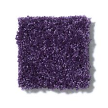 Shaw Floors Value Collections All Star Weekend III 15′ Net Grape Slushy 00931_E0816