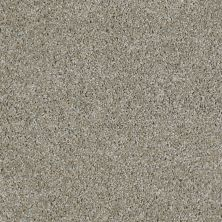 Shaw Floors Value Collections Make It Yours (t) Net Ecru 00120_E0822