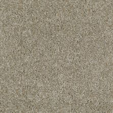 Shaw Floors Value Collections Make It Yours (t) Net Almond 00121_E0822