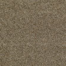 Shaw Floors Value Collections Make It Yours (t) Net Golden Cove 00220_E0822