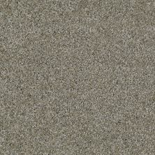 Shaw Floors Value Collections Make It Yours (t) Net Sterling Haze 00520_E0822
