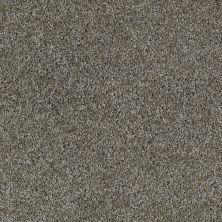 Shaw Floors Value Collections Make It Yours (t) Net Pewter Tweed 00521_E0822