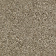 Shaw Floors Value Collections Make It Yours (t) Net Pecan 00720_E0822