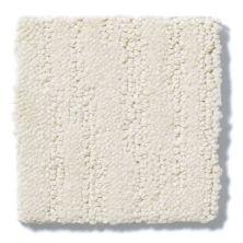 Shaw Floors Value Collections Bandon Dunes Net Canvas 00103_E0825
