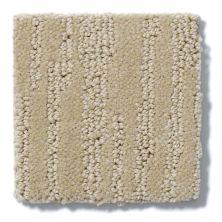 Shaw Floors Value Collections Bandon Dunes Net Mushroom 00703_E0825