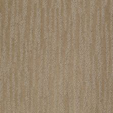 Shaw Floors Value Collections Bandon Dunes Net Sable 00754_E0825