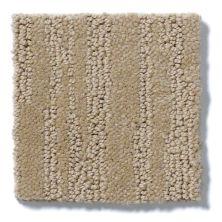 Shaw Floors Value Collections Bandon Dunes Net Sable 00754_E0825
