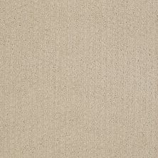 Shaw Floors Value Collections Pacific Trails Net Dunes 00102_E0826