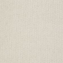 Shaw Floors Value Collections Pacific Trails Net Canvas 00103_E0826