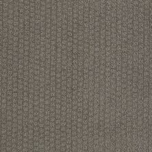 Shaw Floors Value Collections Pacific Trails Net Charcoal 00539_E0826