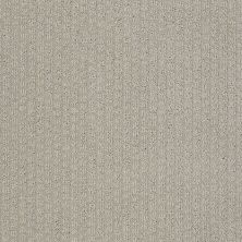 Shaw Floors Value Collections Pacific Trails Net Silver Leaf 00541_E0826