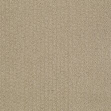 Shaw Floors Value Collections Pacific Trails Net Mushroom 00703_E0826