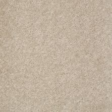 Shaw Floors Value Collections Get Real Net Amazing Greige 00105_E0838