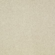 Shaw Floors Value Collections Well Played II 12′ Net Fresco 00100_E0840
