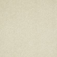 Shaw Floors Value Collections Well Played II 12′ Net Creamy Tint 00101_E0840
