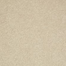 Shaw Floors Value Collections Well Played II 12′ Net Agate 00102_E0840