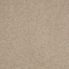 Shaw Floors Value Collections Well Played II 12′ Net Sandy Nook 00104_E0840