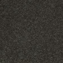 Shaw Floors Value Collections Well Played II 12′ Net Aspen 00302_E0840