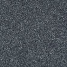 Shaw Floors Value Collections Well Played II 12′ Net Pacific 00401_E0840