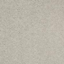 Shaw Floors Value Collections Well Played II 12′ Net Sheer Silver 00500_E0840