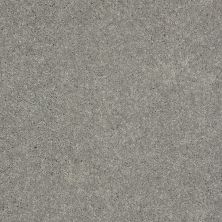 Shaw Floors Value Collections Well Played II 12′ Net Nickel 00502_E0840