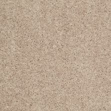 Shaw Floors Value Collections Pay Attention Net White Cloud 00110_E0841