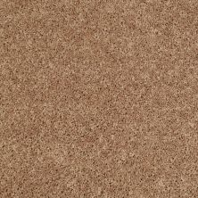Shaw Floors Value Collections Pay Attention Net Corn Silk 00205_E0841
