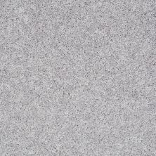 Shaw Floors Value Collections Pay Attention Net Silver Spoon 00500_E0841