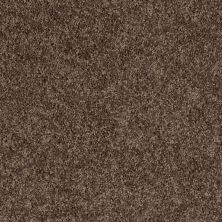 Shaw Floors Value Collections Pay Attention Net Chocolate Chip 00704_E0841