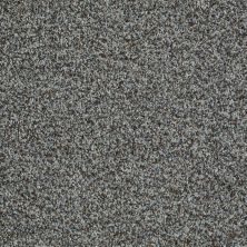 Shaw Floors Value Collections Inspire Me (b) Net Gray Flannel 00531_E0845