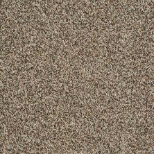 Shaw Floors Value Collections Inspire Me (b) Net Acorn 00730_E0845