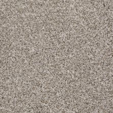 Shaw Floors Value Collections Inspire Me (t) Net Bran Flakes 00111_E0846