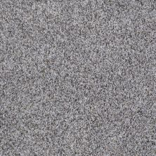 Shaw Floors Value Collections Inspire Me (t) Net Silver Spoon 00521_E0846