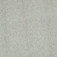 Shaw Floors Value Collections Well Played I 15′ Net Wild Rice 00105_E0847
