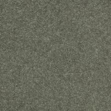 Shaw Floors Value Collections Well Played I 15′ Net Spring Leaf 00300_E0847