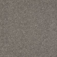 Shaw Floors Value Collections Well Played I 15′ Net Thunder 00503_E0847