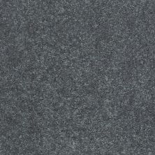 Shaw Floors Value Collections Well Played I 15′ Net Charcoal 00504_E0847