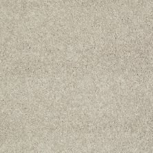 Shaw Floors Value Collections Well Played I 15′ Net Natural Beige 00700_E0847
