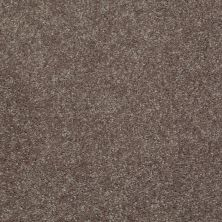 Shaw Floors Value Collections Well Played I 15′ Net Briar Patch 00703_E0847