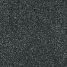 Shaw Floors Value Collections Well Played II 15′ Net Aspen 00302_E0848
