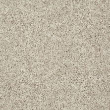 Shaw Floors Value Collections Explore With Me Twist Net Macadamia 00111_E0849