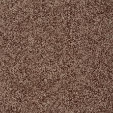 Shaw Floors Value Collections Explore With Me Twist Net Chestnut 00713_E0849