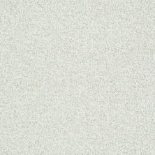 Shaw Floors Value Collections Explore With Me Texture Net Twinkle 00100_E0850
