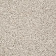 Shaw Floors Value Collections Explore With Me Texture Net Porcelain 00101_E0850