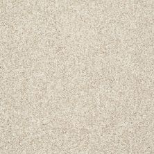 Shaw Floors Value Collections Explore With Me Texture Net Moonscape 00102_E0850