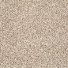 Shaw Floors Value Collections Explore With Me Texture Net Bamboo 00103_E0850