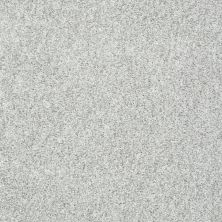 Shaw Floors Value Collections Explore With Me Texture Net Silver Glitz 00500_E0850